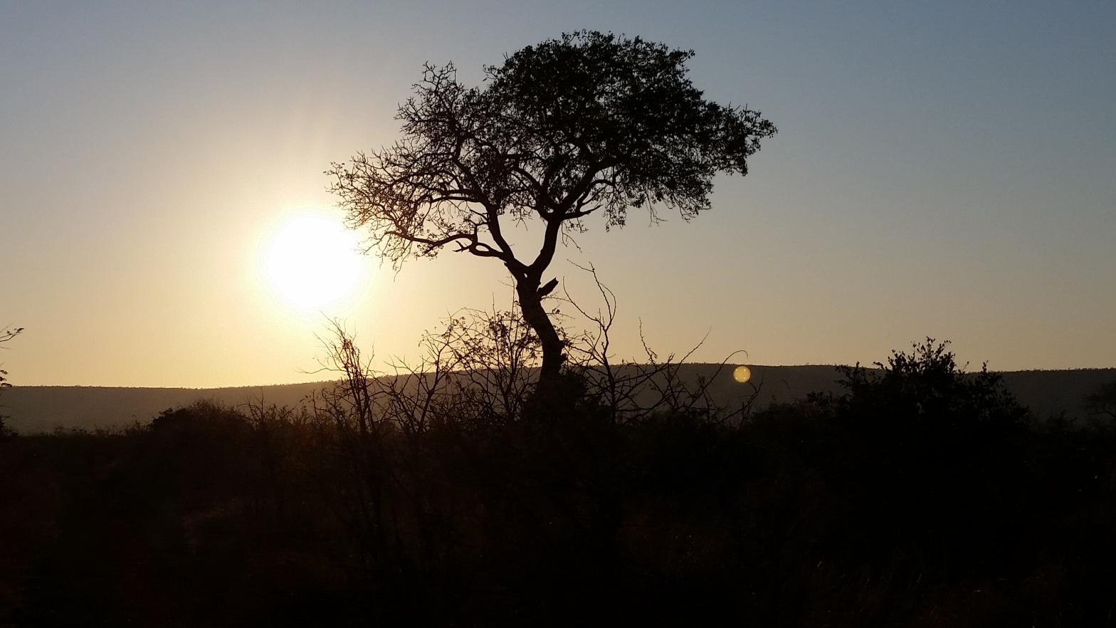 Kruger National Park, South Africa (Photo credit: Paul Blom)